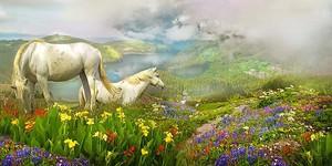 Две лошади на цветочной поляне