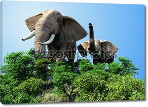 Слон и слоненок в траве