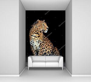 Портрет леопарда на темном фоне