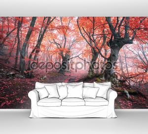 Красный лес в тумане осенью