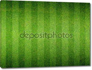 поле трава футбол футбол