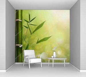 Бамбук с ростком