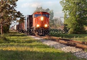 Грузовой поезд в лесу