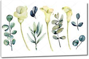 Коллаж из акварельных белых лилий и эвкалипта