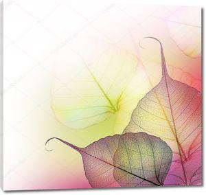 Красивые цветочные граница. Листья