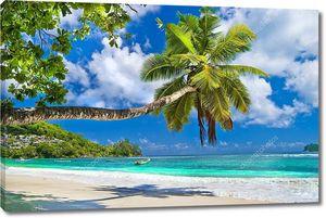 Идиллический тропический пейзаж - Сейшельские острова