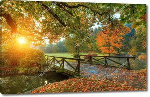 Красивый осенний пейзаж в парке