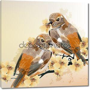 несколько птиц сидят на цветущем отростке дерева