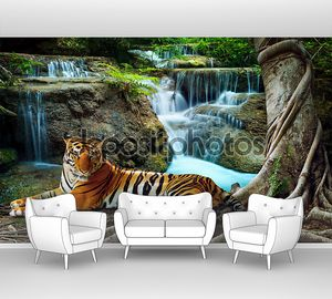 Indochina tiger lying with relaxing under banyantree against bea