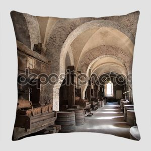 Старый арки на виноградник