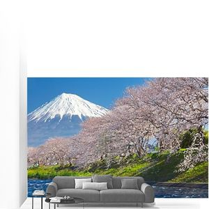 Вид горы Фудзи.