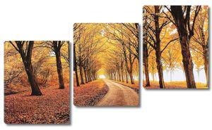 Парковая аллея осенью