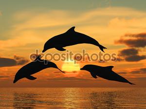 Дельфин желтый закат