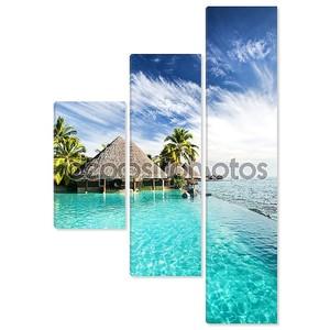 Пейзажный бассейн с пальм и тропического океана