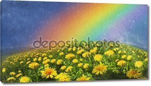 Летние цветы одуванчики