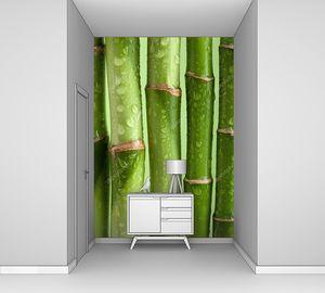 Бамбуковые узловатые стебли