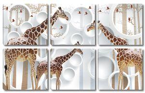 Три жирафа на фоне кругов