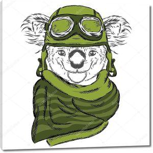 Симпатичный Коала в шлеме и шарфе