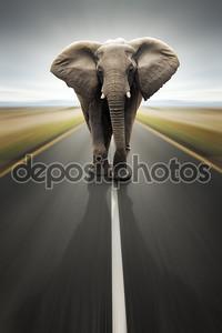 Концептуальное - тяжелого транспорта / путешествия по дороге