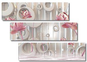 Круги и розовые лотосы