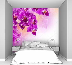 Розовые орхидеи с каплями росы на белом фоне