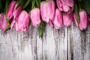 розовые тюльпаны по деревянному столу