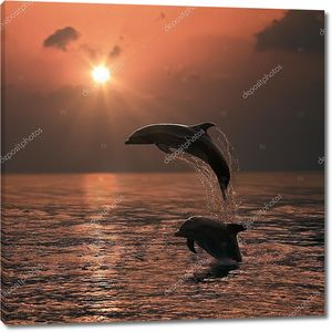 Красивые прыгали дельфины