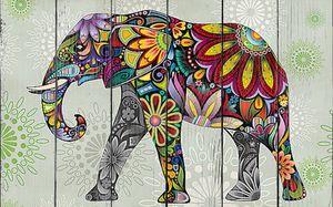 Этника.Слон