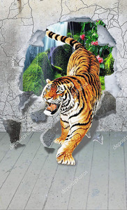 Тигр, выходящий из бетонной стены
