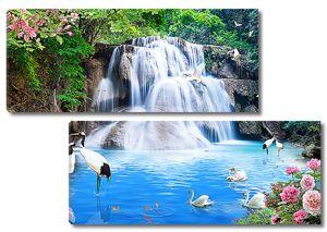 Журавли и лебеди у водопада