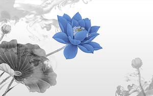 Голубой лотос в центре черно-белого фона