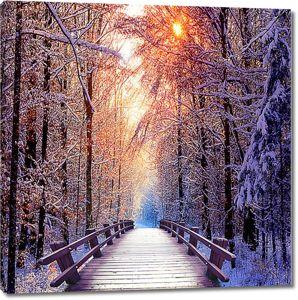 Мостик в снежном лесу