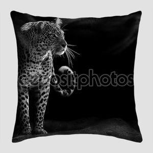Черно-белое изображение леопарда