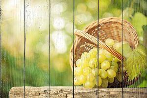 Корзина с зеленым виноградом