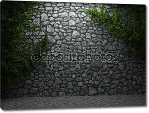 Освещенная каменной стеной и плюща