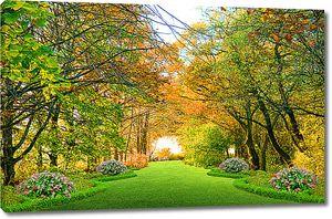 Осенняя аллея в парке