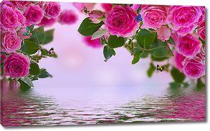 Раскрывшиеся розы над водой