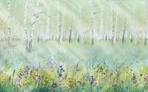 Поляна перед березовым лесом