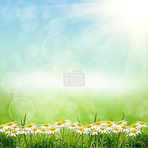 зеленый natute фон