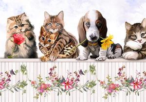 Кошечка с розочкой, песик с герберой