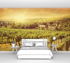 Виноградники пейзаж