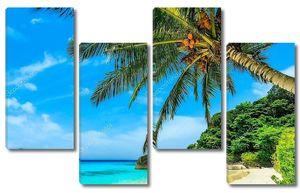 Beach of Similan Islands