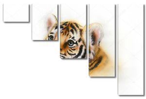 Голова тигренка на белом фоне