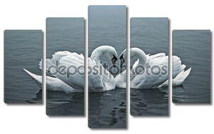 Пара лебедей в виде сердца