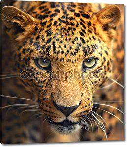 Леопард на портрете