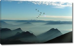Птицы над вершинами