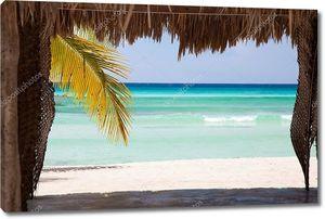 Вид на Карибское море через хижину из листьев