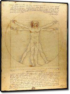 Леонардо да Винчи. Витрувианский человек