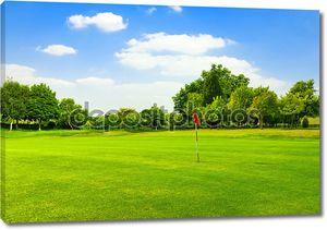Идеальный зеленая трава на поле для гольфа