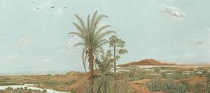 Пейзаж с пальмой